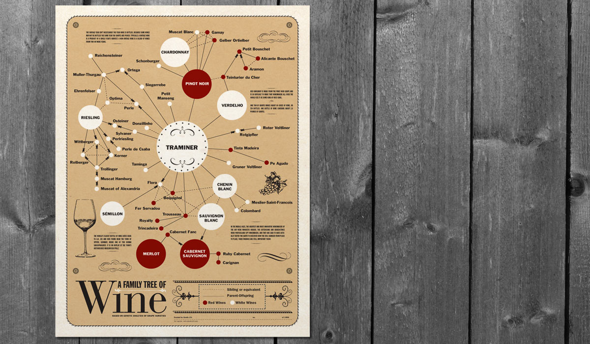 Family Tree of Wine poster by Lee Willett / Studio 23